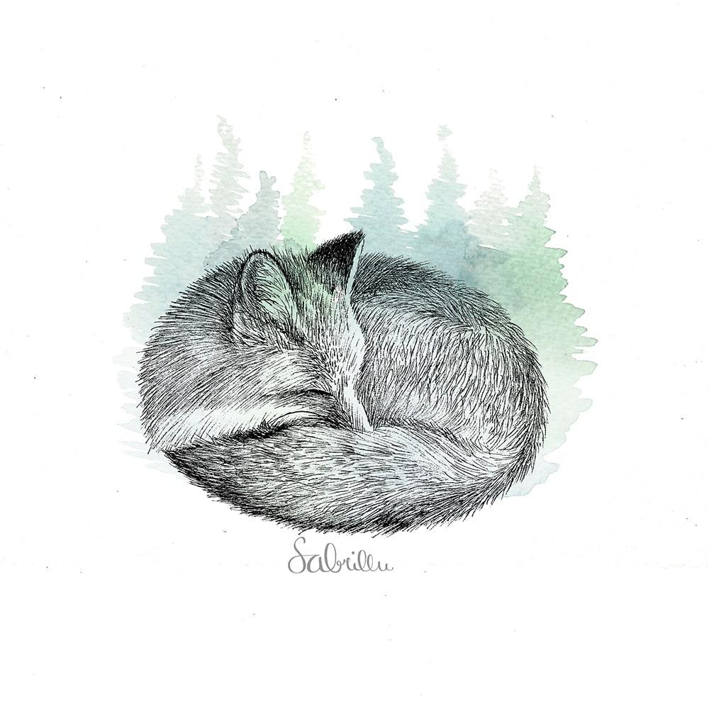 Fox ink drawing inktober