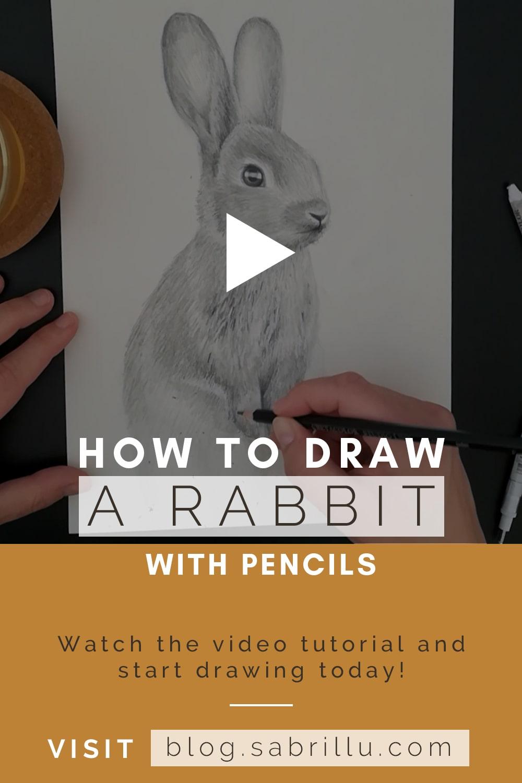 Wie man einen Hasen mit Bleistift zeichnet - Video Anleitung - Sabrillu