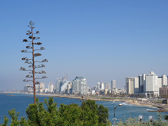 View from Jaffa to Tel Aviv