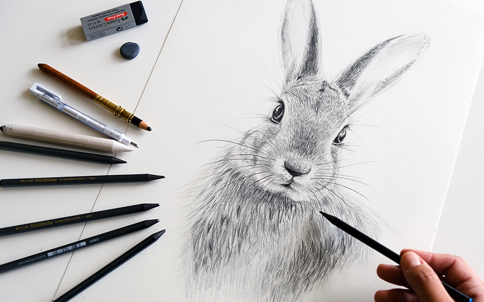 How to draw a rabbit with pencils in 9 easy steps - Sabrillu Drawing Blog