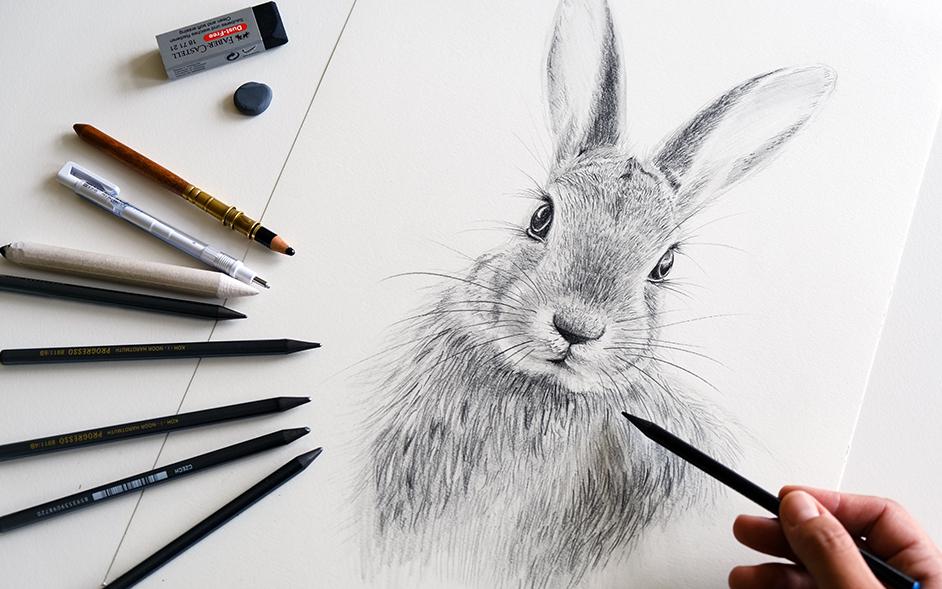 Wie man einen Hasen mit Bleistift zeichnen kann - Blog Sabrillu